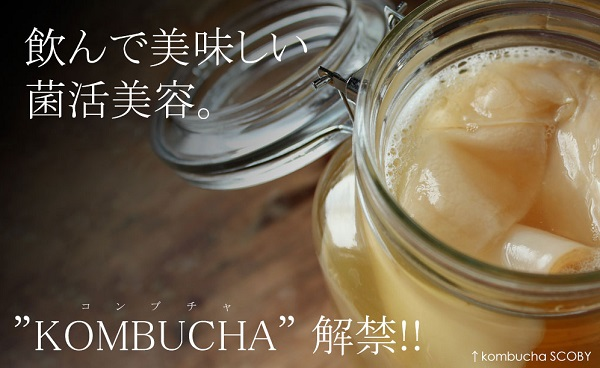 KOMBUCHA(コンブチャ)の口コミと効果は?紅茶キノコのハーブアブソリュートコンブッカがセレブの間で話題!